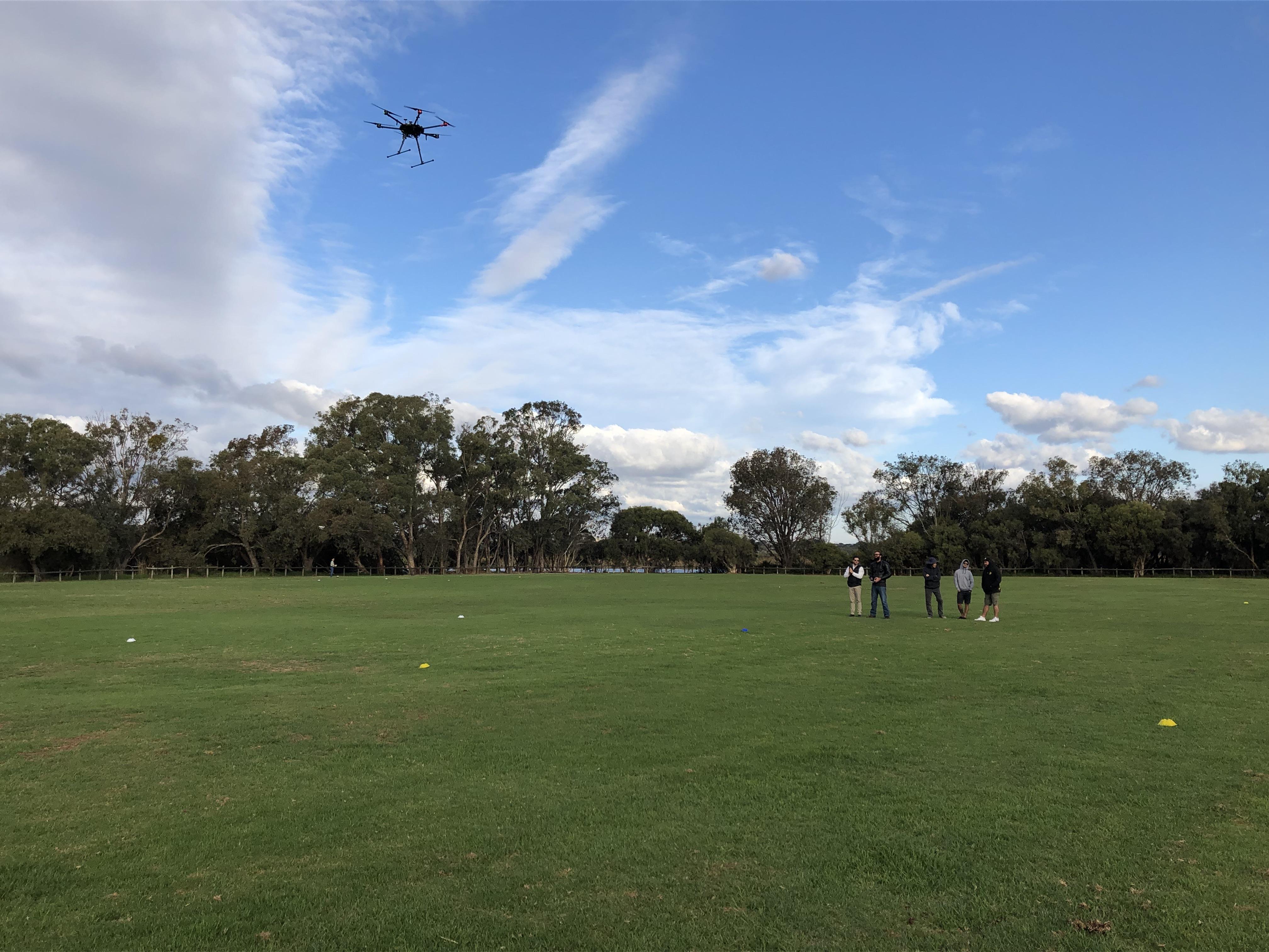 RPAS aerial survey